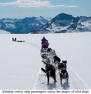Alaskan cruise ship passengers enjoy the magic of sled dogs