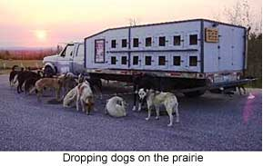 Dropping dogs on prairie